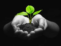 Environmental Monitoring and Modeling